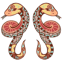 মিথুন রাশি (Gemini)
